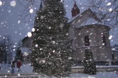 2011-vianoce011