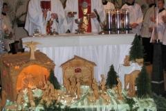2011-vianoce020